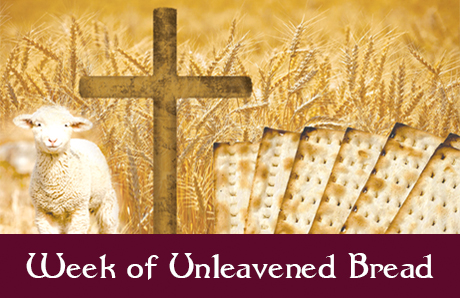 A Week of Unleavened Bread
