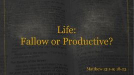 Life: Fallow or Productive?