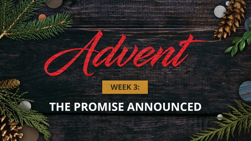 Advent Week 3: The Promised Announced